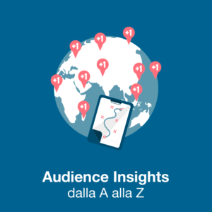 audience insights corso online
